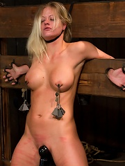 Blonde Hard Bodied Bombshell